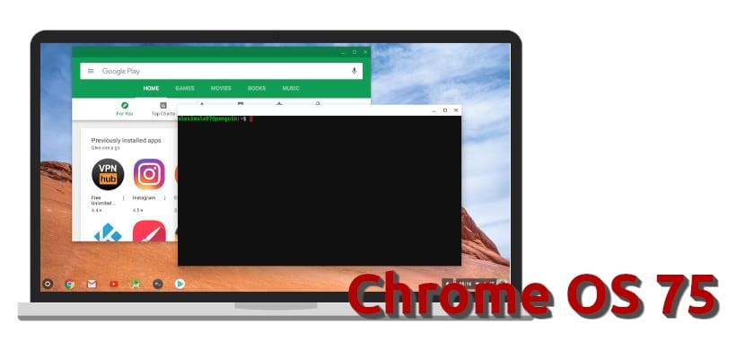 Chrome OS 75