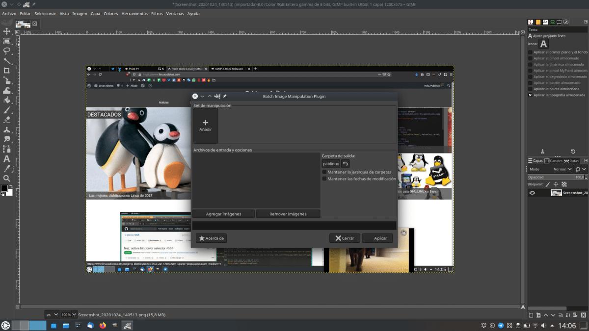 Instalar plug-ins en la versión Flatpak de GIMP