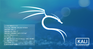 Kali Linux 2021.1