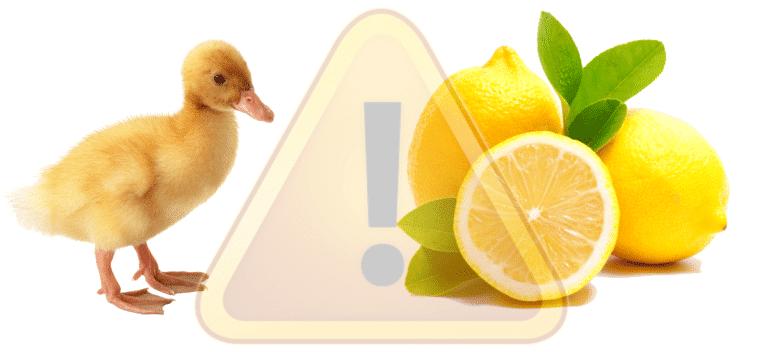 LemonDuck