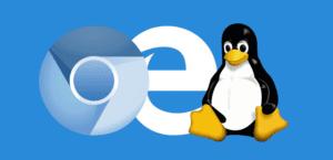Microsoft Edge Chromium en Linux