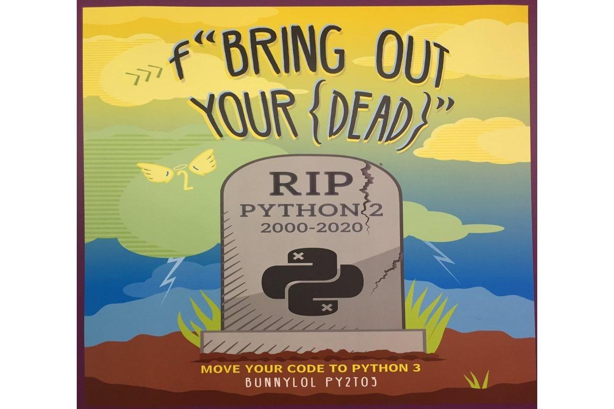 Python rip