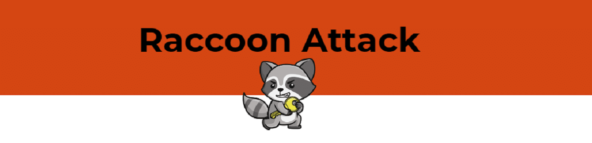 Raccoon Attack