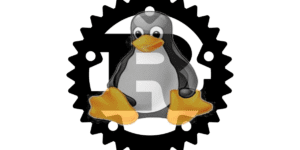 Rust Linux Kernel