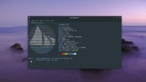 Imagen del desarrollo de Solus 4