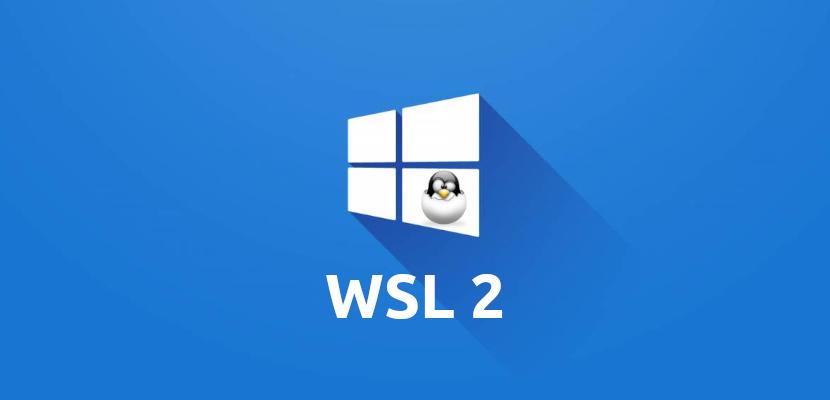 WSL 2