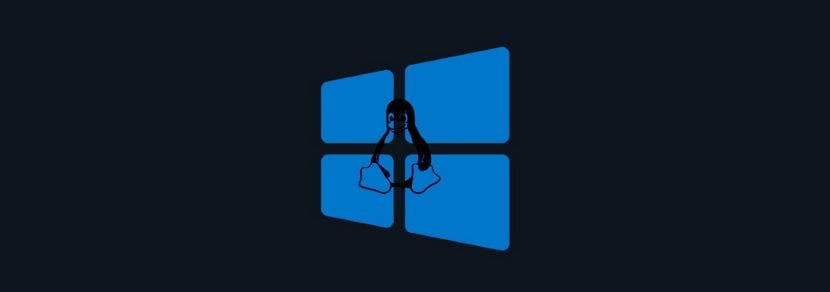 Windows_WSL