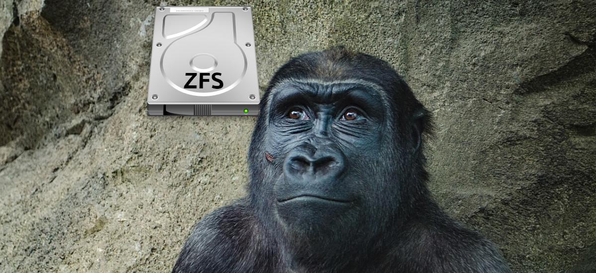 ZFS en Ubuntu 20.10
