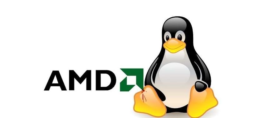 amd-linux-kernel