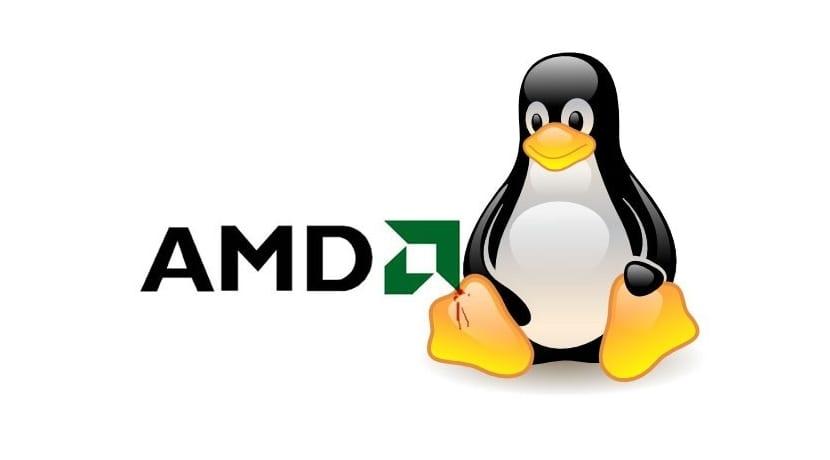 AMD logo y Tux