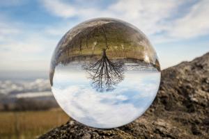 Predicciones sobre el futuro
