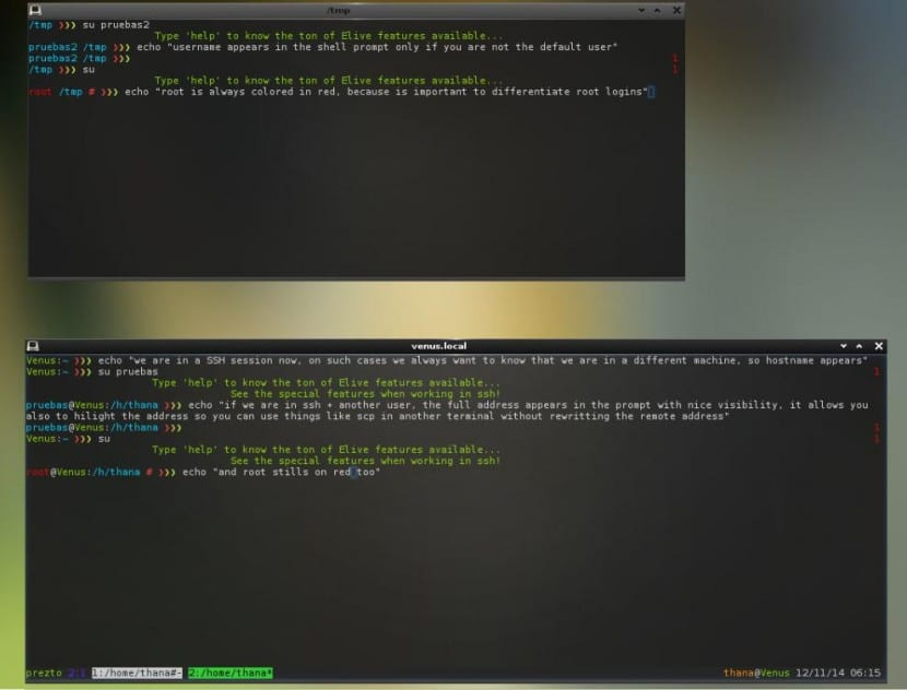 elive 2.5.0 terminal