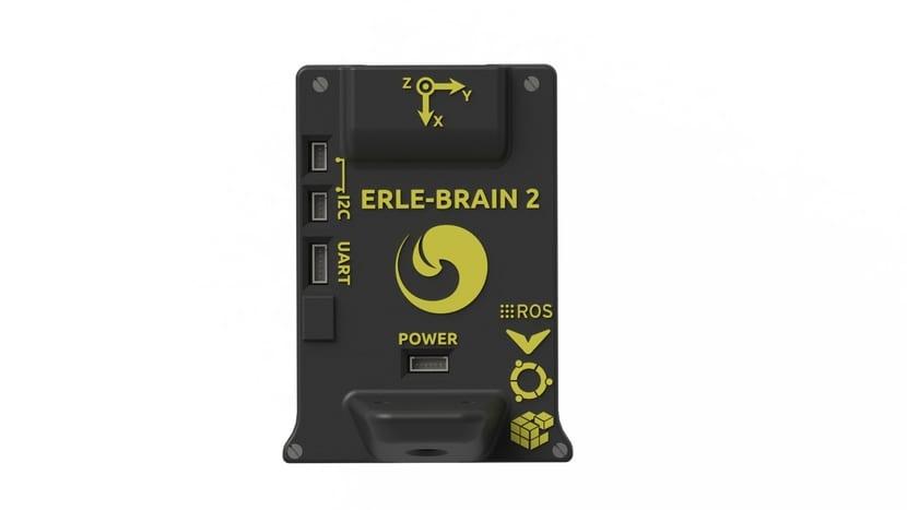 Erle-Brain 2