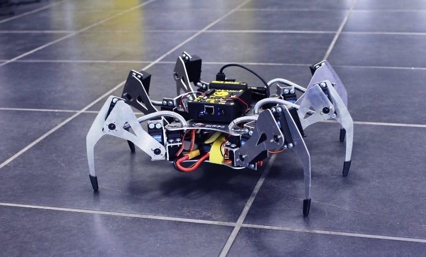 Erle-Spider de Erle-Robotics