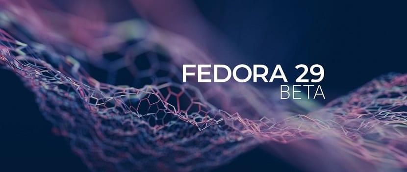 f29-beta