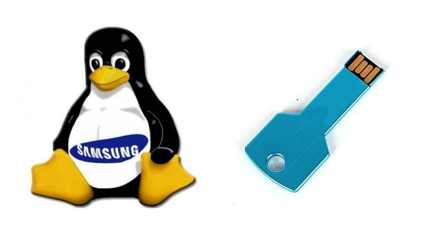 Tux con logo Samsung y pendrive