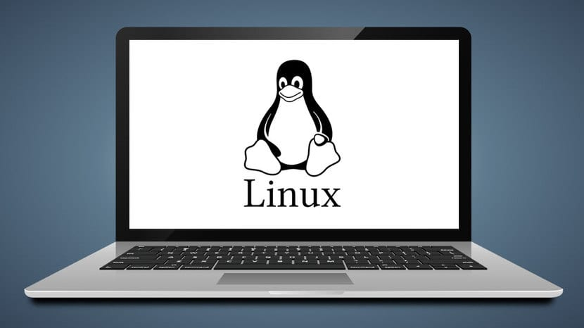 Laptop con Linux