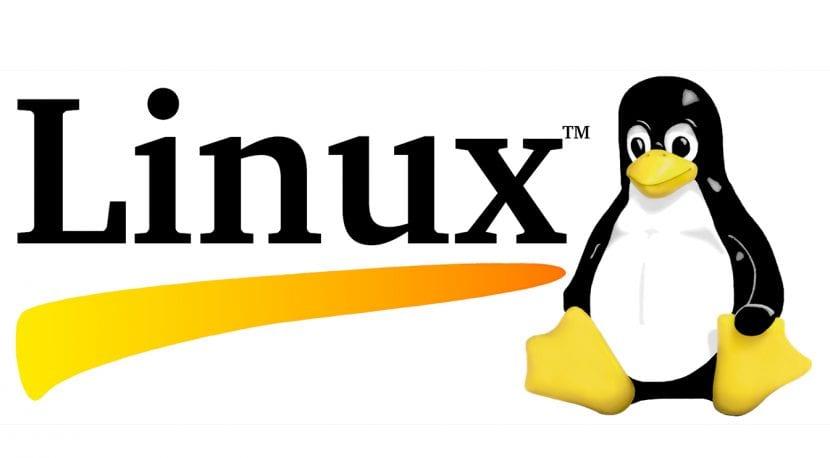Linux logo 25 años
