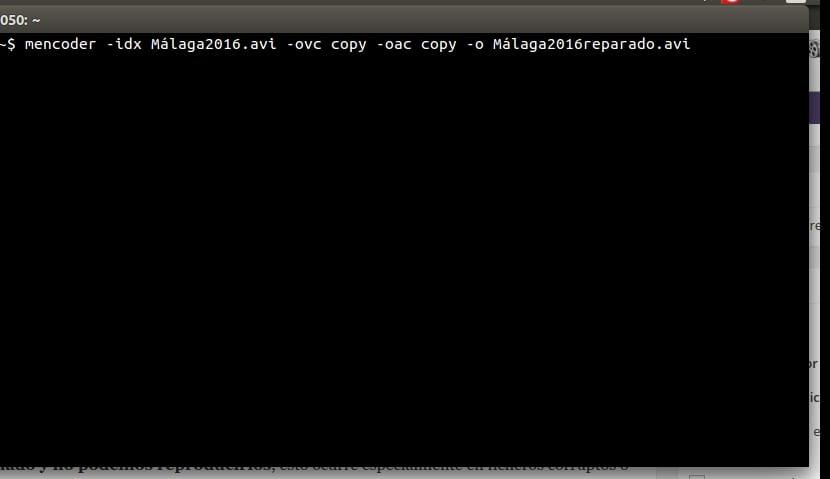 Memcoder shell Linux Bash