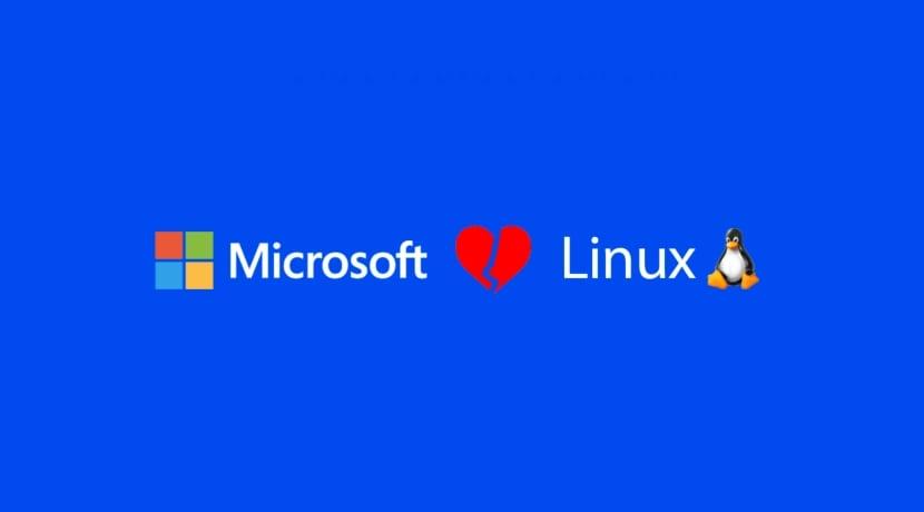 Microsoft Love??? Linux