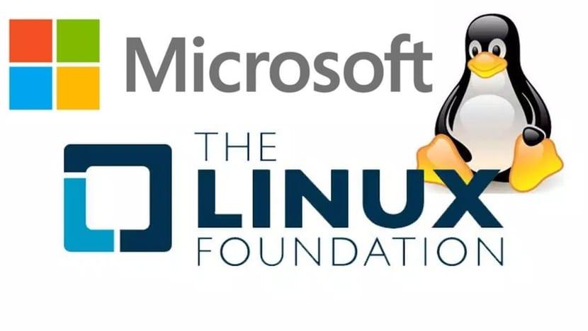 Microsoft y Linux Foundation logos con Tux