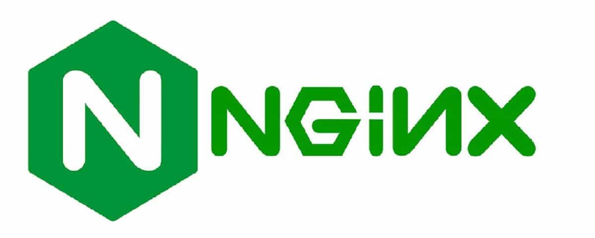 Nginx 1.18.0