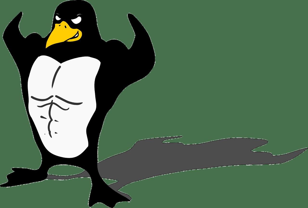 Qué distribución Linux elegir