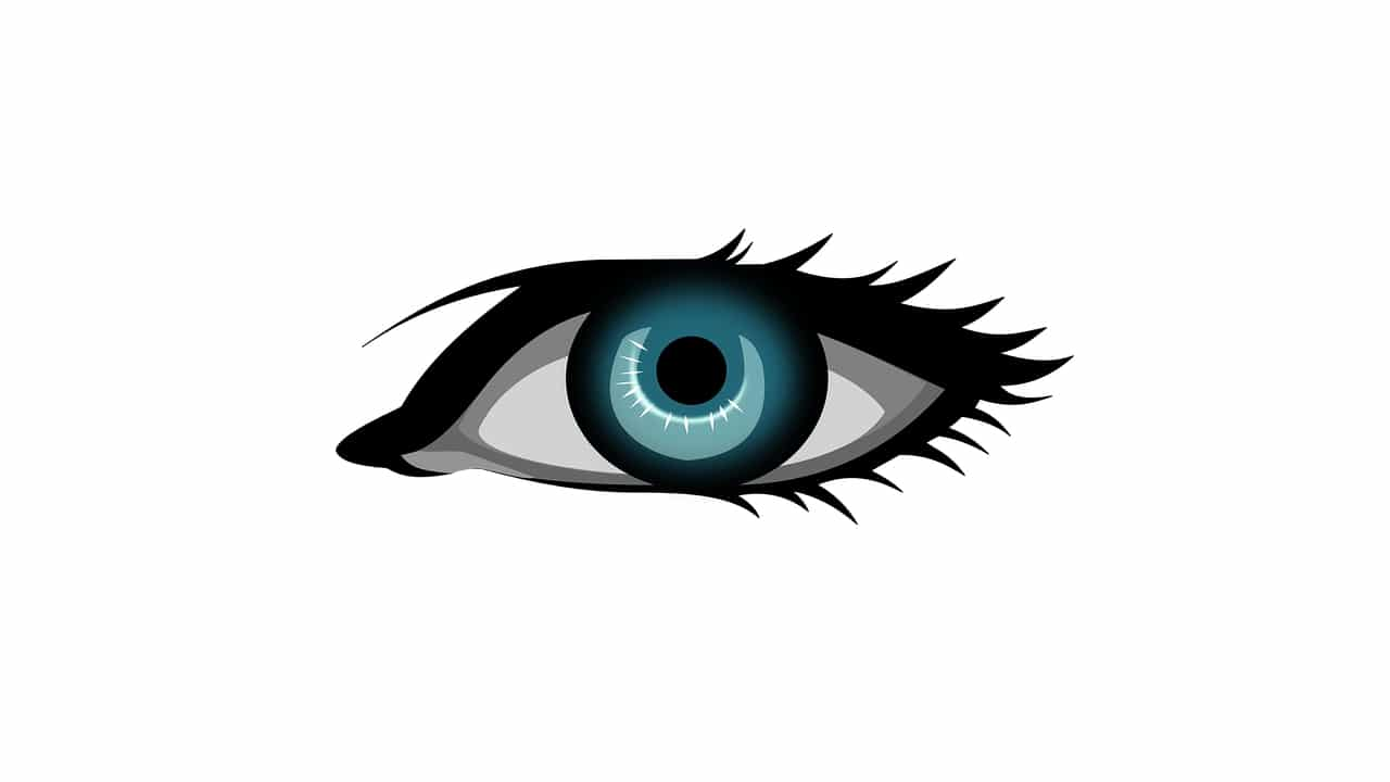 Safe Eyes Linux