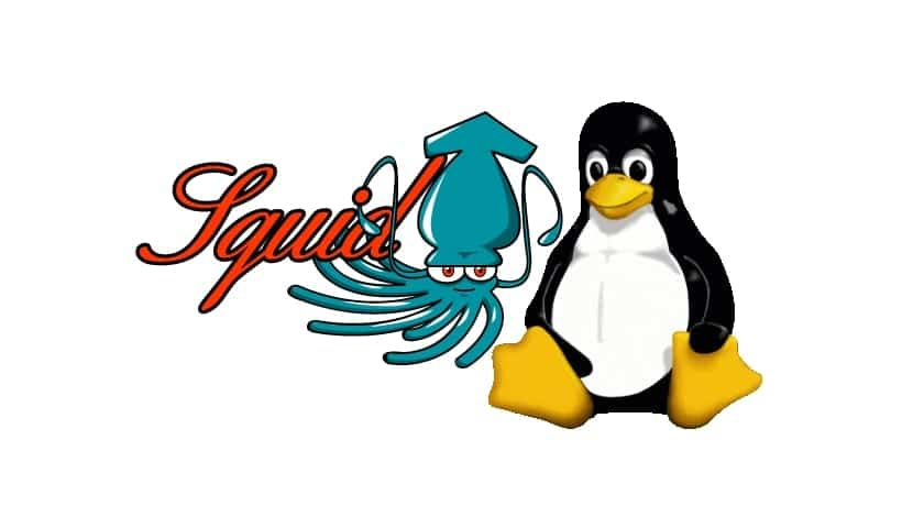 Squid logo y Tux