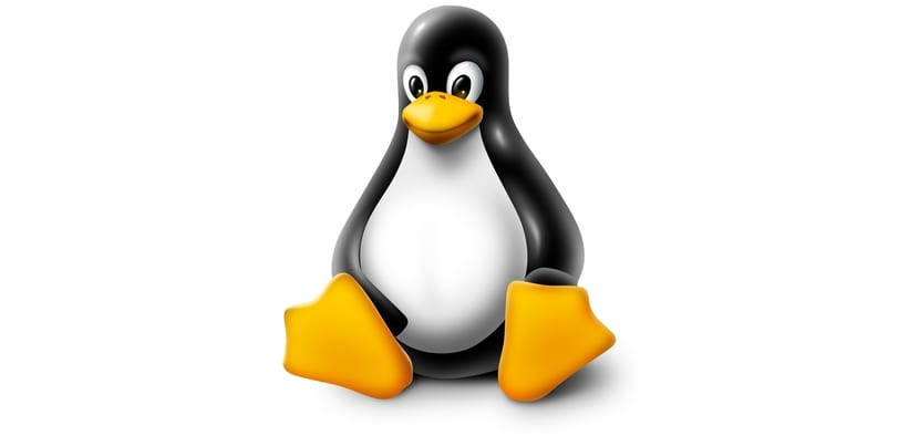 Tux Linux con brillo
