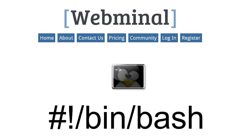 Webminal bash