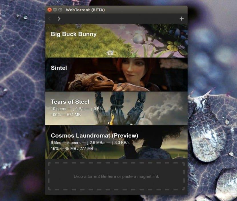 webtorrent-desktop-ubuntu
