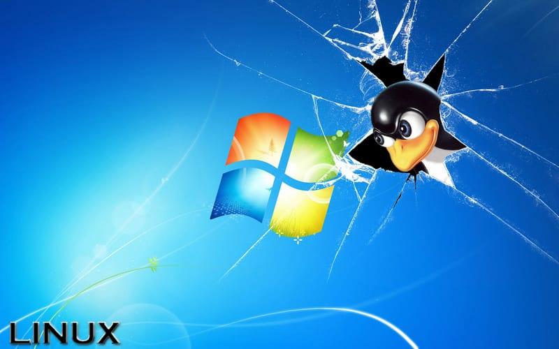 """Tux rompiendo la """"ventana"""""""
